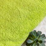 Tissus éponge vert anis