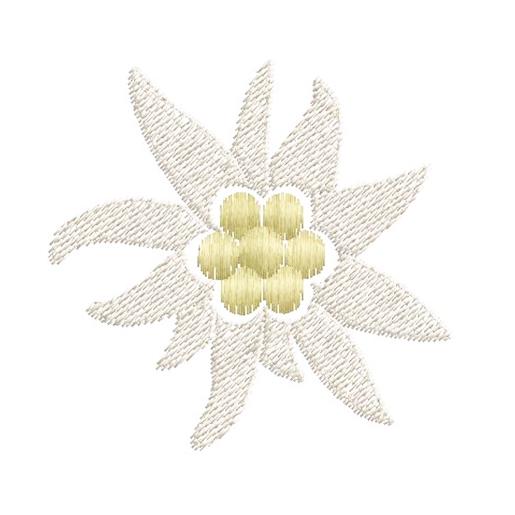 Broderie Motif fleur blanche Edelweiss